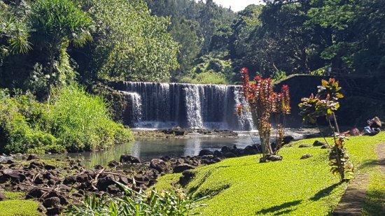 Kilauea, HI: The gardens are magical and worth the hike