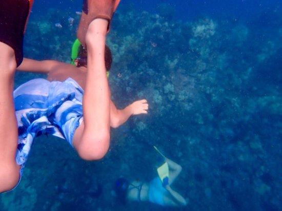 Kawaihae, HI: snorkeling with Ashley