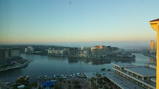 Embassy Suites by Hilton Tampa - Downtown Convention Center: 20171105_065437_large.jpg