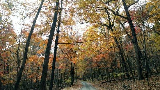 Berkeley Springs, Западная Вирджиния: Cacapon Resort State Park