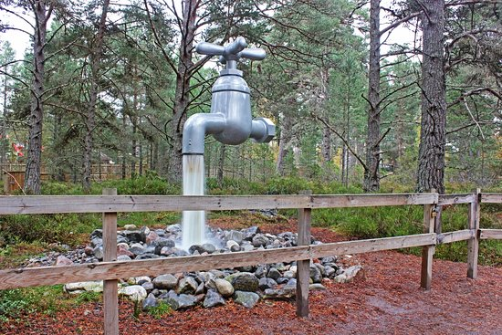 Landmark Forest Adventure Park: Wonderwood, (where is the water coming from?)