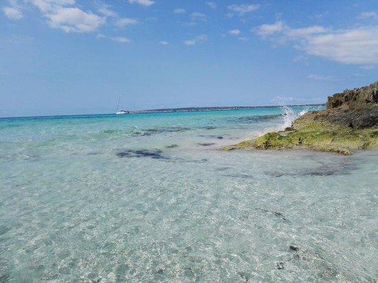 Playa Es Arenals: platja es arenals