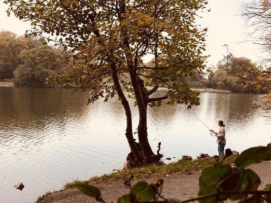 Castlewellan, UK: The lake