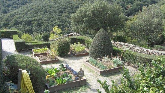 Prades, Frankreich: Kräutergarten