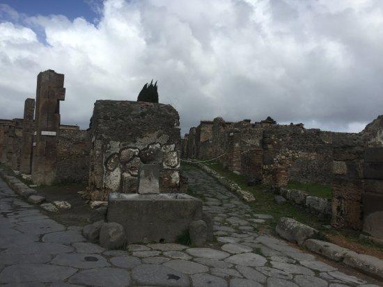 Campaniatourguide