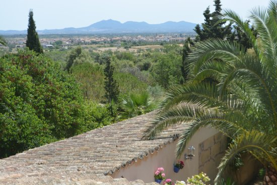 Porreres, Spain: View from our terrace.