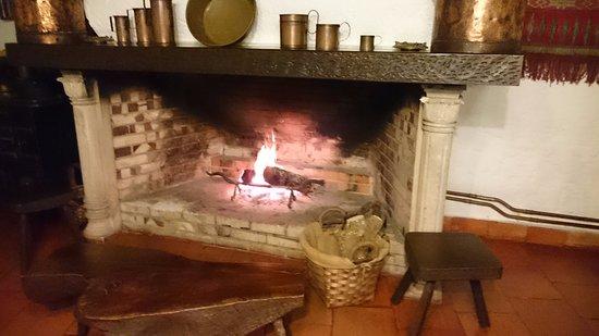 Anadia, Portugal: Finalmente o frio chegou.