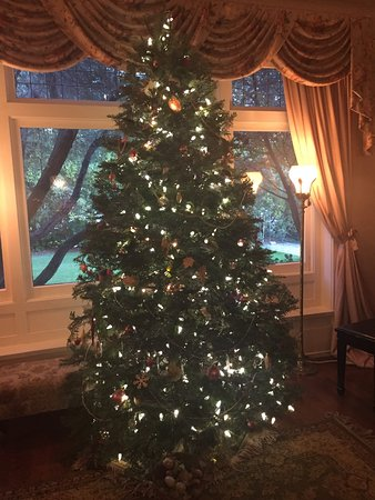 South Pasadena, CA: Christmas Tree in Living Room 2016