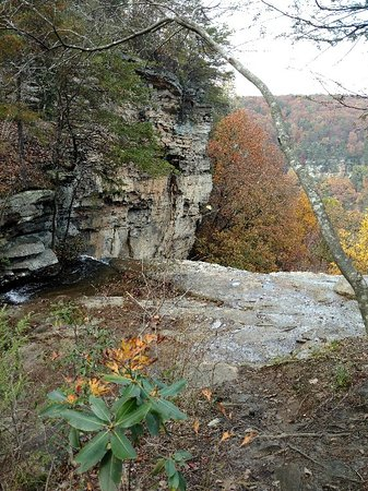 Signal Mountain, TN: IMG_20171105_141848_large.jpg