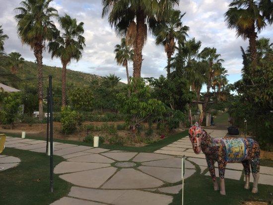 Los Cabos, México: Very nice farm/resort concept.