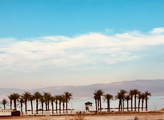 Israel Maven Tours simply THE best!' - Traveller Reviews