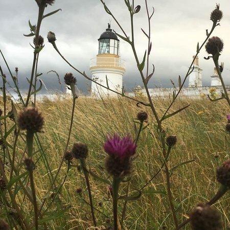 Fortrose, UK: Scottish Lighthouse