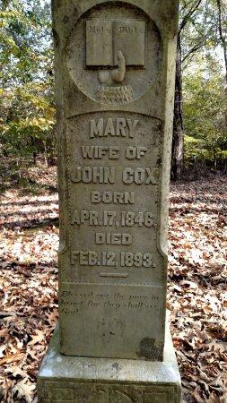 โพคาฮอนทัส, อาร์คันซอ: Scott Cemetery and Philip-Reeves Cemetery are two cemeteries at the town of Davidsonville, AR.
