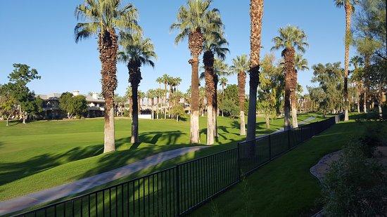 Marriott's Desert Springs Villas II: View from Patio