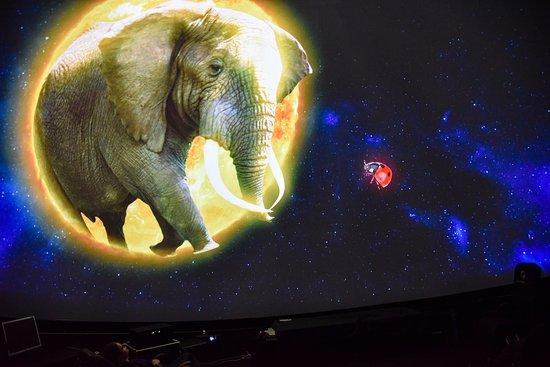 Space quiz for school children in Planetarium Astroport 360