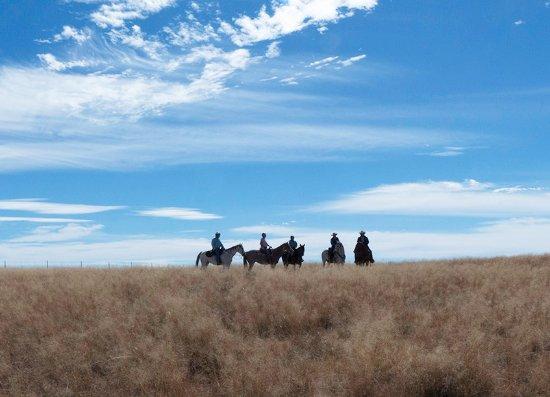 Patagonia, AZ: Riding in the San Rafael Valley