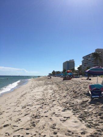 Hilton Fort Lauderdale Beach Resort: photo8.jpg