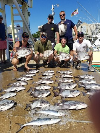 Matador sport fishing charters virginia beach all you for Fishing trips in virginia