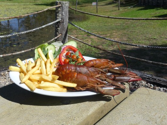 Malanda, Australia: Redclaw (yummy fresh water cray fish) and Chips
