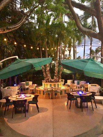 The Hotel of South Beach: photo5.jpg
