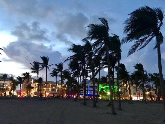 The Hotel of South Beach: photo6.jpg