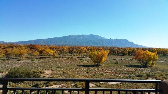 Santa Ana Pueblo, نيو مكسيكو: view from room patio