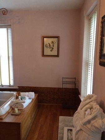 Palace Hotel & Bath House Spa: Jacuzzi tub