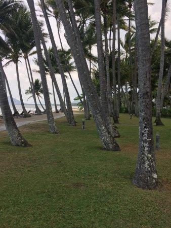 Palm Cove Beach: photo6.jpg