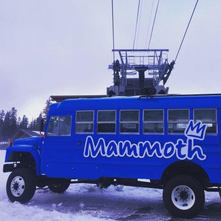 Mammoth Mountain: photo4.jpg