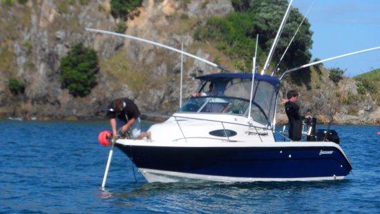 Waiwurrie Coastal Farm Lodge : boating