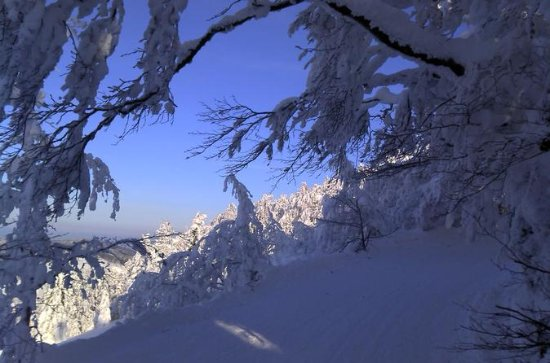Private 3-Day Slovakia Winter Break ...