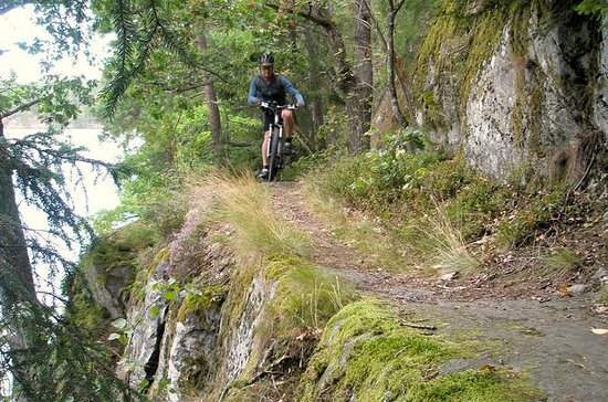 Advanced Mountain Bike Single Track Giro nei dintorni di Stoccolma