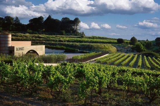 VIP Penedes & Montserrat: Wine, Cava