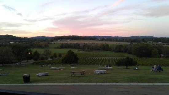Arrington, TN: Our view from the deck of the building.