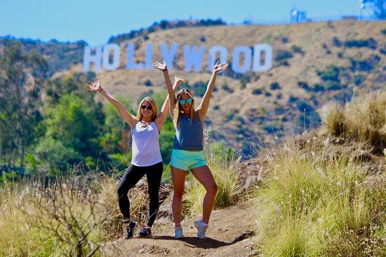 Hollywood Tourz