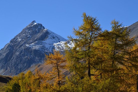 La Punt-Chamues-ch, Sveits: Am Albulapass