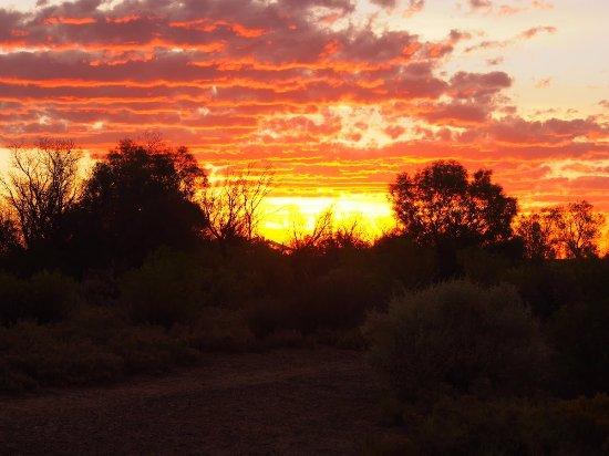 Coward Springs Campground: Amazing sunset in Coward Springs