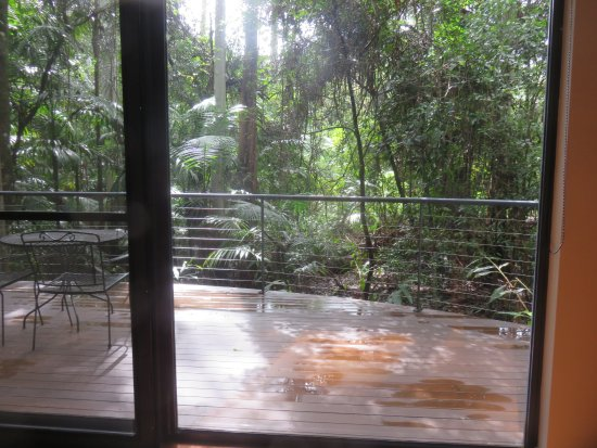 Pethers Rainforest Retreat: This is looking out of the room and across the balcony. Just beautiful.