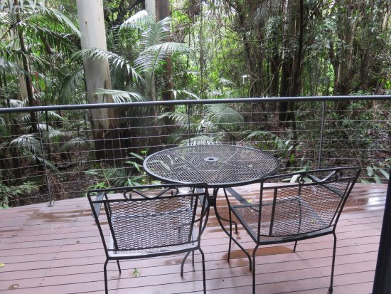 Pethers Rainforest Retreat: Breakfast on the balcony each morning is just beautiful with all the sounds of the birds.