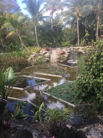 Mounts Botanical Garden West Palm Beach Fl Top Tips