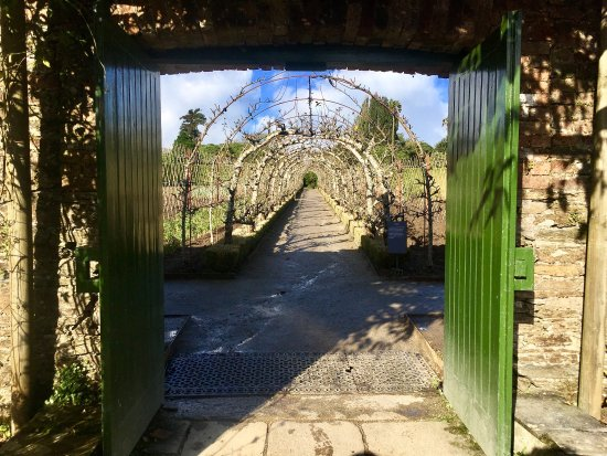 The Lost Gardens of Heligan: photo0.jpg