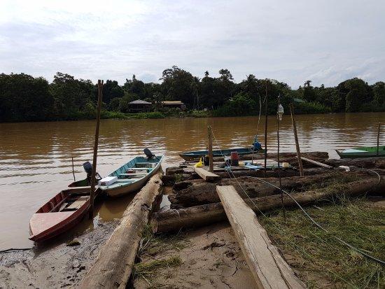 Sukau, Malasia: Where we got into/off the boat
