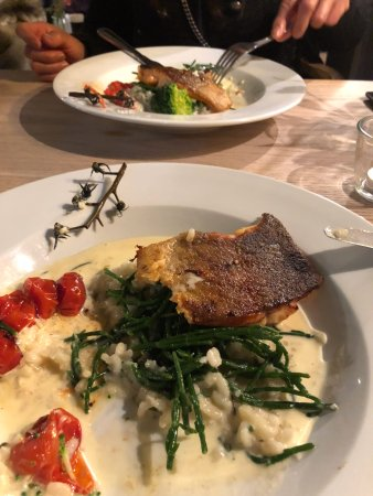 Sedlescombe, UK: Trout