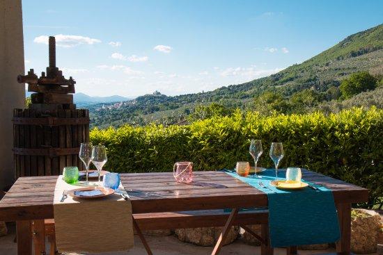 Vizeat en Assisi