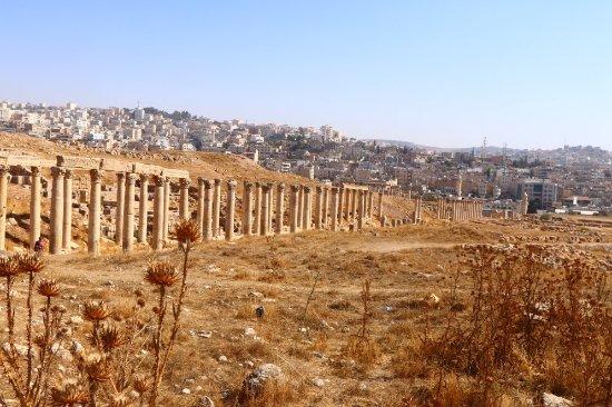 Ruïnes van Jerash: 20171027105410_IMG_0066_large.jpg