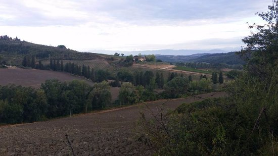 Montespertoli, Italy: View of the area