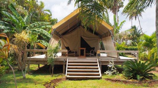 Ikurangi Eco Retreat Picture