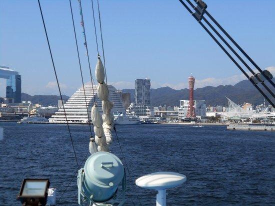 Кобе, Япония: クルーズ船の上から眺めたポートタワー