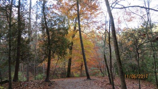 The Natural Bridge of Virginia: Autumn splendor