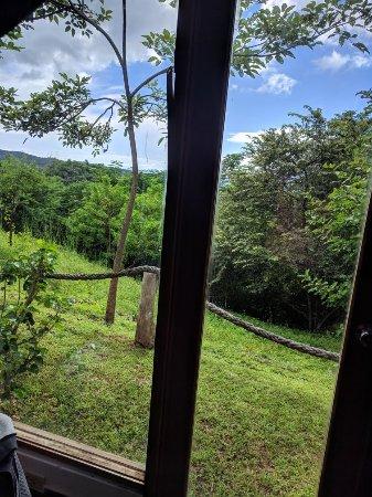 Playa Venao, Panama: IMG_20171106_101731_large.jpg